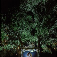 220x220 sq 1470460873409 navy and blush wedding at cw hill country ranch bo