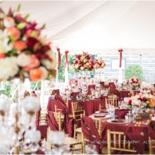 220x220 sq 1476133431782 cranberry fall wedding at hoffman haus in frederic