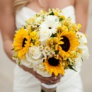 130x130 sq 1379335415087 sunflower bride