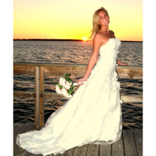 220x220 sq 1420049466675 sunset bride pwg