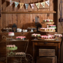 Venue: Friedman Farms  Caterer: Constatino's Catering  Cupcakes: Blue Elephant Cupcakes  Musician: Groove Train  Dress Designer: Allure Bridals