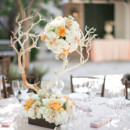 <p> Venue: The Villa San Juan Capistrano</p>  <p> Floral Designer: G and J Flower Distribution </p>  <p> </p>  <p> <br /> </p>
