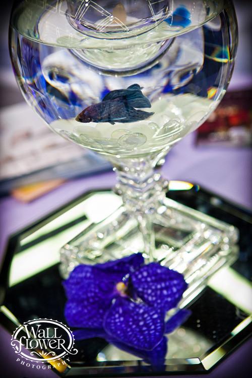 Trendy Event Rentals - Event Rentals - Tacoma, WA - WeddingWire