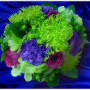 130x130_sq_1214929467107-weddingbouquet4