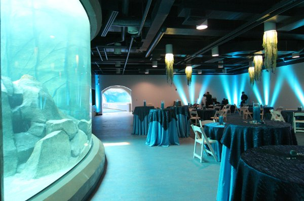 Pittsburgh Zoo Ppg Aquarium Pittsburgh Pa Wedding Venue