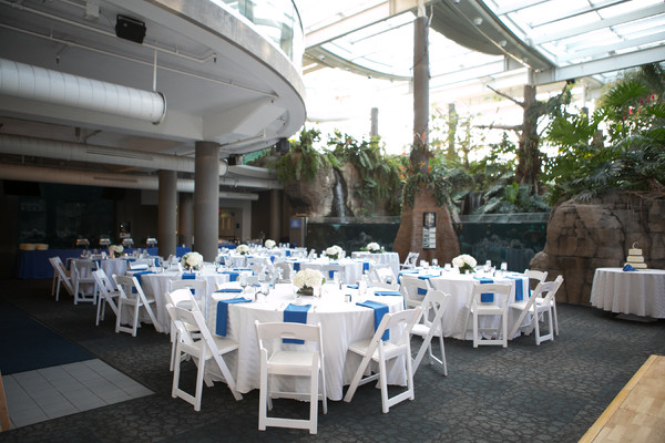 Pittsburgh zoo ppg aquarium pittsburgh pa wedding venue for Affordable furniture pittsburgh