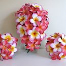 Plumeria 39 S Wedding Flower Boutique Photos Flowers Pictures New York N