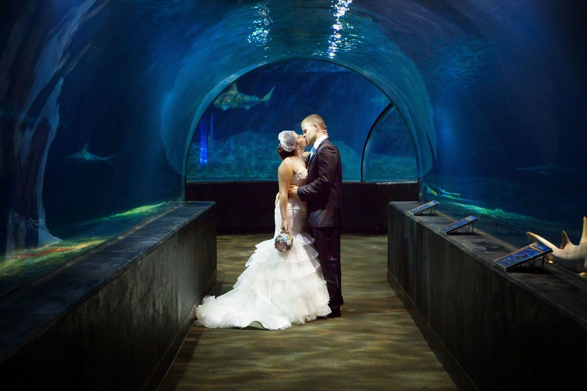 Oklahoma Aquarium Venue Jenks Ok Weddingwire