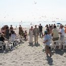 Beautiful Cocoa Beach Wedding
