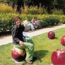 130x130 sq 1453159895 7bdf77a59be9f572 apples