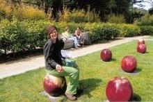 220x220 1453159895 7bdf77a59be9f572 apples