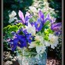 130x130_sq_1255121456932-flowercubefaqs