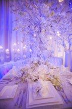 220x220_1225304616109-weddingfaire