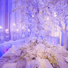 220x220 sq 1225304616109 weddingfaire