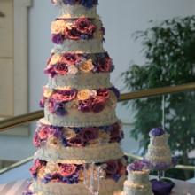 220x220 sq 1373596280450 katiebelles cakes