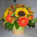 130x130 sq 1238122606722 flowerpics2006038