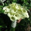 130x130 sq 1238122608988 flowerpics2006041