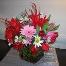 130x130 sq 1238122617316 flowerpics2006096