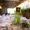 Venue:Wilson Vineyards