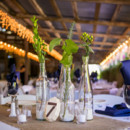 Venue: Wilson Vineyards