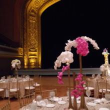 Patra Designs Flowers Woodmere Oh Weddingwire