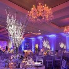 220x220 sq 1485994229 16c0f74e277847fb uplighting and pinspotting centerpieces 2