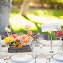 <p> Venue: Historic Cree Estate</p>  <p> Caterer: Simply Elegant Catering</p>  <p> Floral Designer: Tend </p>  <p> Stationery: Yvonne Hung </p>  <p> Cake: Over the Rainbow Cupcakes</p>  <p> Rentals: Signature Party Rentals</p>  <p> DJ/Lighting: Primetime Productions</p>  <p> Event Coordintor: The Bride &amp; I </p>  <p> Transportation: Lin Lines </p>  <p> Groom and Groomsmen Attire: Ryder&#39;s Tuxedo Shop</p>  <p> Dress Designer: San Patrick</p>  <p> Dress Store: A Beautiful Day Bridal Salon</p>  <p> Bridesmaid Dresses: Jarlo</p>  <p> Rings: KFK Jewelers and Blue Nile</p>  <p> Dance Lessons: 3rd Street Dance</p>
