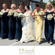 220x220 sq 1453926592 456ad345d9c3d18b pier 49 bride and bridesmaids wedding 09 2013