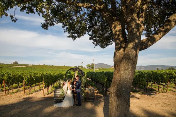 Intimate Weddings Napa Valley