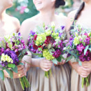 Bridesmaid Dresses: Watters from Bridals by Lori  Floral Designer: Matthews Manor