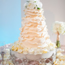 Cake:Incredible Edibles