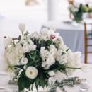 Floral Designer:Petal Pushers