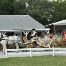 Saddle Woods Farm Venue Murfreesboro Tn Weddingwire