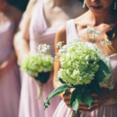 Bridesmaid Dresses:Alfred Angelo