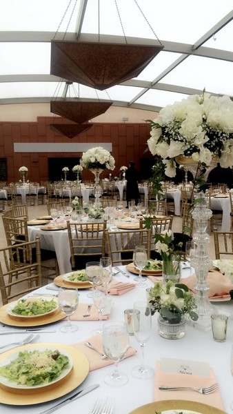 600x600 1497985179365 7 wedding