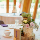 Reception Venue:The Bissell Tree House at the John Ball Zoo  Floral Designer:Ambiance Expressing You