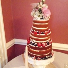220x220 sq 1445836842737 2015 10 03 connie cakes nashville tn naked cake le