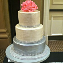 220x220 sq 1489959090744 pearl and sliver cake