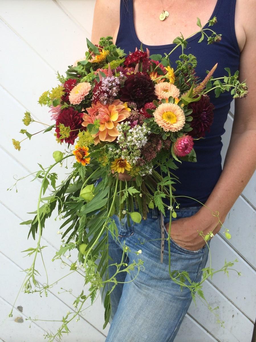 aster b flowers flower farm flowers essex ma. Black Bedroom Furniture Sets. Home Design Ideas