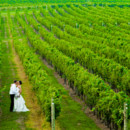 130x130 sq 1371620356890 laurita winery wedding new york city