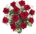220x220 1215027695974 rosas