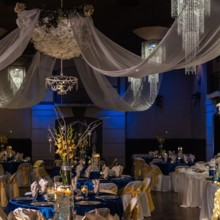 220x220 sq 1483467475234 royal blue and yellow weddingthe bella serasquare