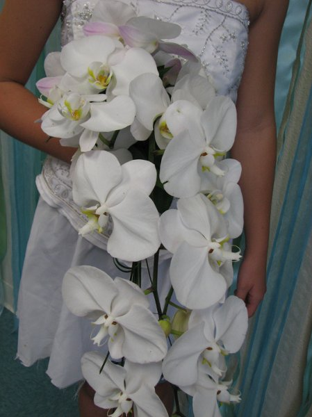 photo 13 of Michael's Flower Girl