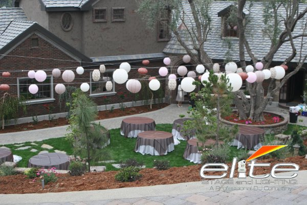 photo 5 of Elite Signature Weddings