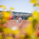 130x130_sq_1365095530082-seattle-and-san-francisco-wedding-photographer-rubin-photography0022