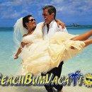 130x130 sq 1326136605452 beachbumbizcardback001