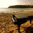 130x130_sq_1377018440243-my-new-slam-grand-piano-shell-at-emerald-bay-beach