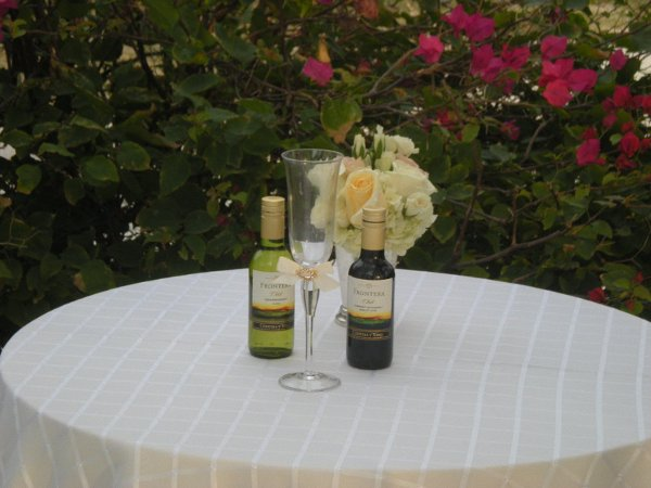 photo 30 of FloridaWeddingsbyCecilia (Officiant)