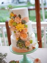 220x220_1379627567939-katherine-jane-photography-rustic-country-wedding-new-england009