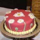 130x130_sq_1247949047198-cake